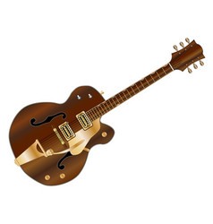 Country and western guitar vector