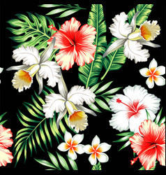 hibiscus and orchids tropical seamless background vector image