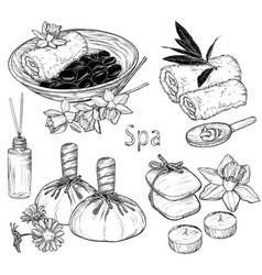 Set spa beauty and health care vector