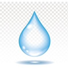 Realistic water drop isolated vector