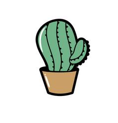 Botanic cactus plant of the desert nature vector