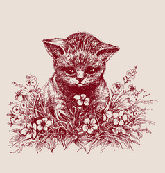 cat sitting between flowers hand drawing vector image