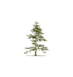 Cedar tree logo design template vector