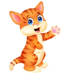 Cute baby cat cartoon vector image