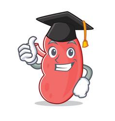 Graduation kidney character cartoon style vector