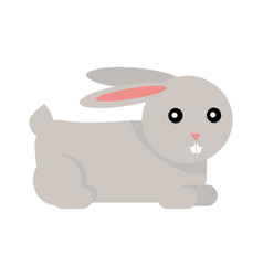 rabbit cartoon isolated on white vector image