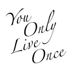 yolo text background vector image