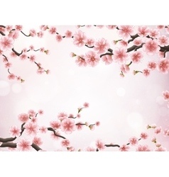 Realistic japan cherry branch EPS 10 vector image vector image