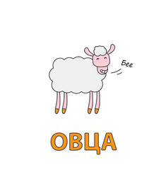 cartoon sheep flashcard for children vector image