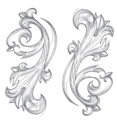 Decorative floral element in the baroque style vector