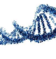 DNA helix isolated on white background vector