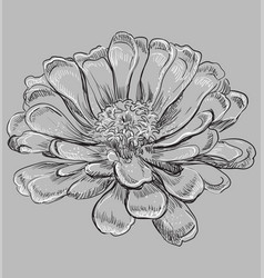 grey flower 6 vector image