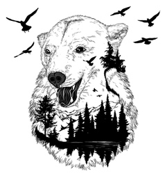hand drawn bear portrait wildlife concept vector image