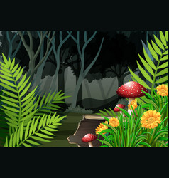 night time in the forest vector image