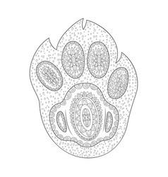 paw print shape of dog foot zen vector image