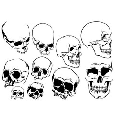 set 10 black and white human skulls vector image