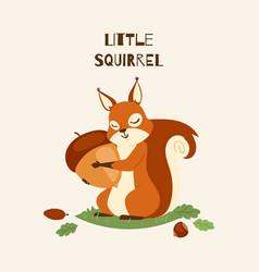 Squirrel little hugging acorn and standing vector