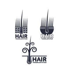 hair transplantation logo logotype template set vector image