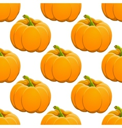 Pumpkin seamless pattern on white vector image