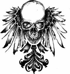 skull heraldry illustration vector image