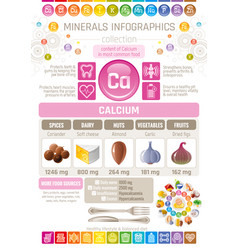 Calcium mineral supplements rich food icons vector