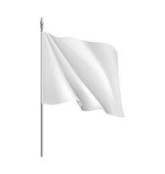 Flag mockup vector