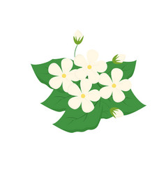 flower on white background for graphic and web vector image