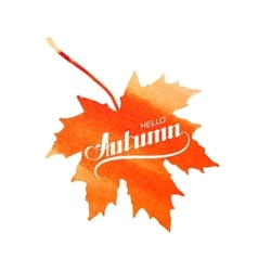 Hello Autumn label on watercolor maple leaf vector