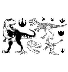 Set dinosaurs vector