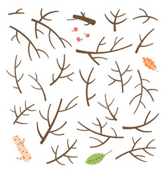 Set of branches twigs sticks drawn in a simple vector