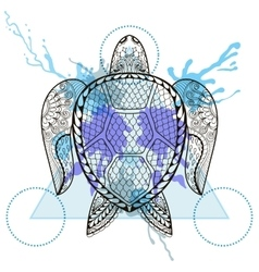 zentangle stylized turtle in triangle frame vector image