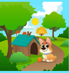 smiling corgi sitting on path in park little bird vector image