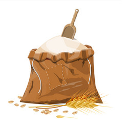 Cloth sack with whole flour ear wheat and scoop vector