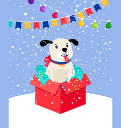 cute snow puppy in gift box vector image