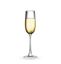 Naturalistic glass with festive champagne vector