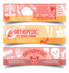 orthopedic banners with x-ray human bones vector image