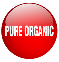 Pure organic red round gel isolated push button vector