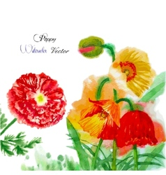 Watercolor background with red poppy-03 vector image