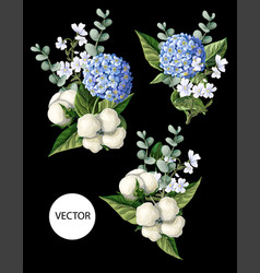 bouquet with hortensia cotton flowers vector image