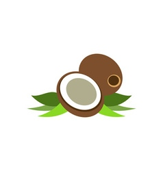 Coconut-380x400 vector