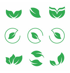 green leaves icon set ecology and nature s vector image
