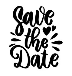 save date lettering phrase on white vector image