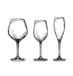 Set of empty wine glasses vector