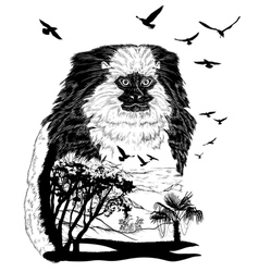 Monkey marmoset for your design wildlife concept vector image