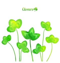 Green watercolor painted summer clover leaves vector image vector image