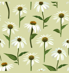 chamomile flowers and leaves seamless vector image