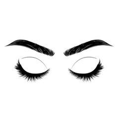 closed eye with long eyelashes and brows vector image