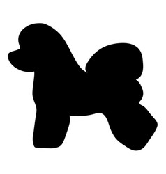 Dog breed bichon frise silhouette vector