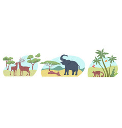 Exotic wildlife flat compositions vector