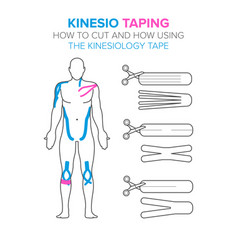 Kinesio taping how to cut and how using the vector